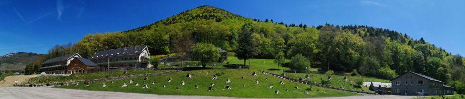 centre-vacances-pyrenees-chene-et-roc